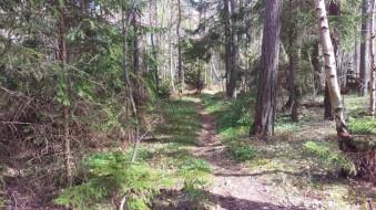 Jag gick genade genom skogen fram till den sista gården vid Rannarve