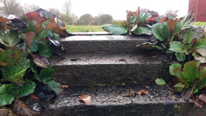 Trappan upp från Donnerska parken