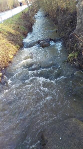 Vårflod i Robbjensån