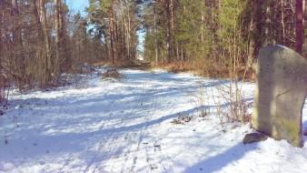 På väg ner mot Djurgårdslundsvägen
