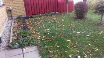 Fråga 2: Var det nödvändigt att blåsa i alla löv till mig?